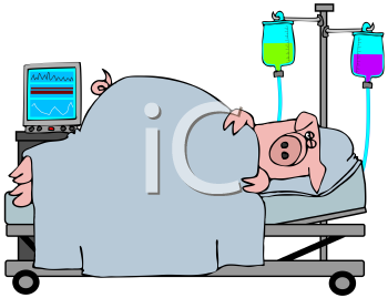 Royalty Free Clipart Image of a Sick Pig