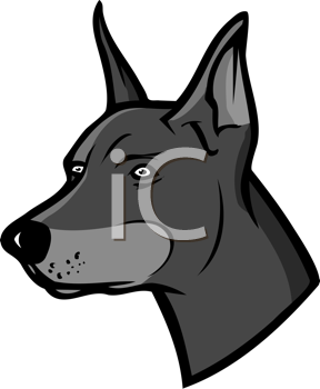 Royalty Free Clipart Image of a Doberman