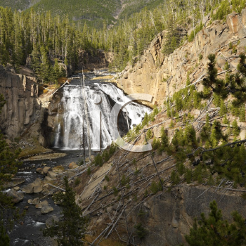 Royalty Free Photo of a Waterfall in Yellowstone National Park, Wyoming