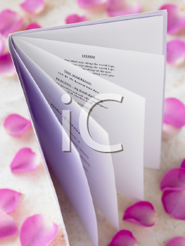 Royalty Free Photo of a Wedding Booklet Surrounded by Rose Petals