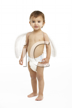 Studio Portrait Of Toddler Wearing Nappy And Angel Wings