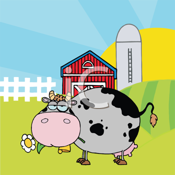 Royalty Free Clipart Image of a Cow Eating a Daisy in Front of a Barn