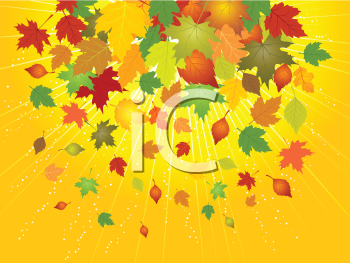 Royalty Free HD Background of Falling Autumn Leaves