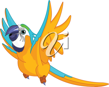 Illustration of happy Flying Parrot