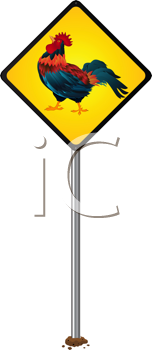Attention proud rooster, stylized road sign, isolated object over white background