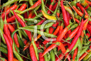 Royalty Free Photo of Peppers