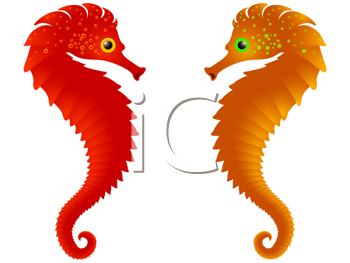 sea horses against white background, abstract vector art illustration