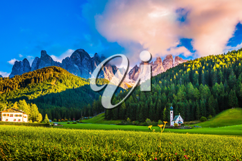 The sun illuminates fabulous jagged rocks of Tirol and green forest. The Dolomites. The concept of eco-tourism in Alpine meadows