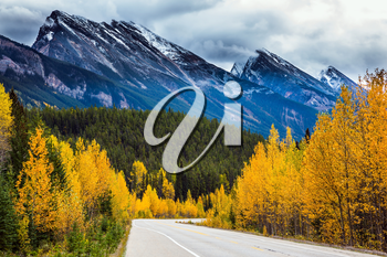 The concept of active and automobile tourism. The astonishing nature of the Rockies of Canada. The road 93 Icefields Parkway passes among the snow-capped mountains