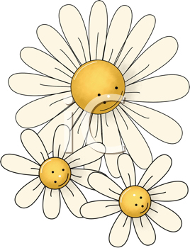 Royalty Free Clipart Image of Daisies