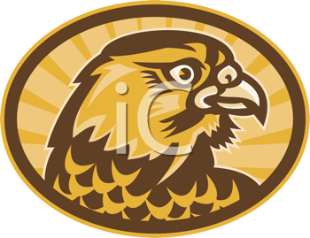 Royalty Free Clipart Image of a Profile of a Falcon