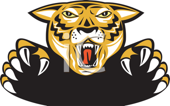 Royalty Free Clipart Image of a Tiger Head and Claws