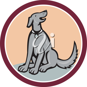 Illustration of a dog sitting down looking up set inside circle done in cartoon style on isolated background.