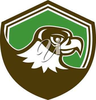 Illustration of a falcon hawk eagle bird head looking to side set inside shield crest on isolated background done in retro style.