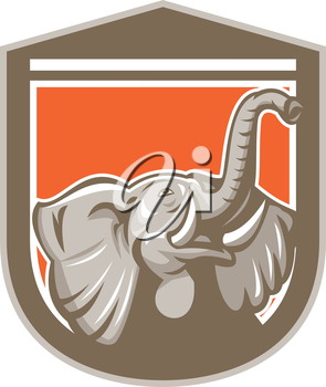 Illustration of an elephant head with tusk looking up set inside shield crest on isolated background done in retro style.