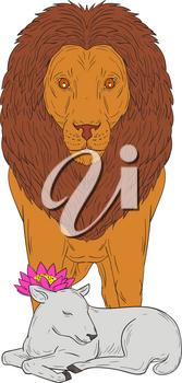 Drawing sketch style illustration of a lion standing over lamb with lotus flower on its head viewed from front set on isolated white background.