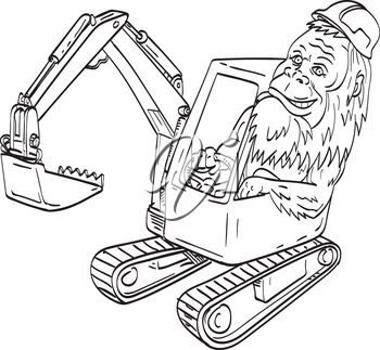 Line art drawing illustration of sasquatch or bigfoot, an ape-like creature in Canadian and American folklore, wearing hardhat driving a mechanical digger excavator in tattoo style black and white.