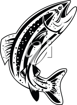 Retro style illustration of a Columbia River redband trout, inland redband trout or interior redband trout, species of salmonid in the family Salmonidae native jumping up on isolated background.