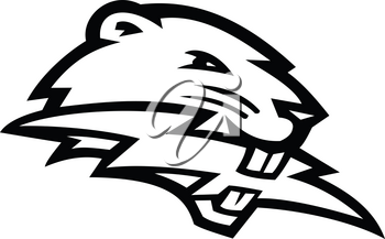 Black and white mascot illustration of head of a North American beaver, a large, primarily nocturnal, semi-aquatic rodent, biting lightning bolt or thunderbolt side view on isolated background in retro style.