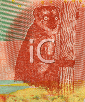 Royalty Free Photo of a Lemur on 500 Francs 2006 Banknote from Comoros