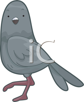 Royalty Free Clipart Image of a Pigeon