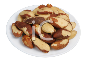Brazil nut (Bertholletia excelsa) on a white plate on a white background, isolated.