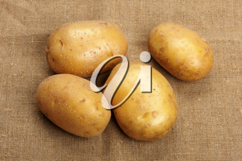 Several brown potatoes lies on a sacking