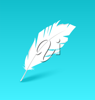 Illustration white feather isolated on blue background - vector