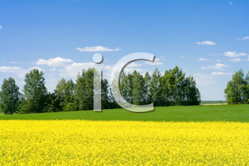 Royalty Free Photo of a Rural Meadow