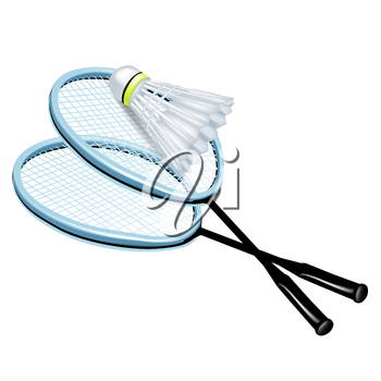 two rackets and badminton shuttlecock isolated
