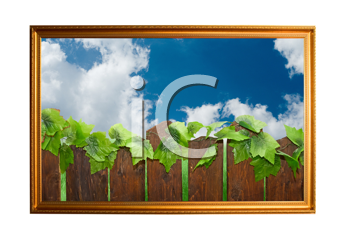 Royalty Free Photo of a Picture of a Wooden Fence
