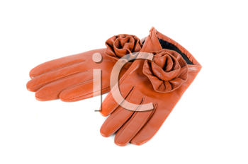 Red modern female leather rose gloves isolated on a white