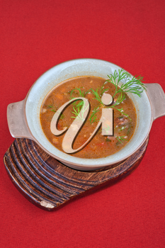 cabbage soup - tasty dish on red background