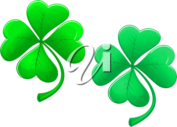 Green lucky clover isolated on white background for ecology design