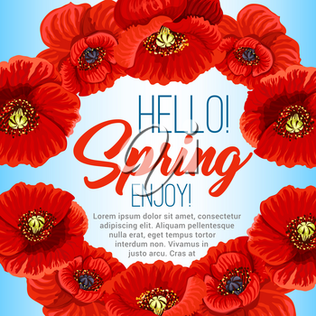 Hello Spring poster design of poppy flowers wreath or floral frame. Vector greeting quotes design for springtime holidays with blooming flower bouquets and flourish petal blossoms