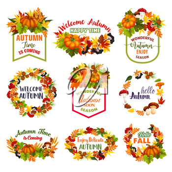 Welcome Autumn or Hello Fall icons of pumpkin or rowan berry harvest and forest mushroom . Vector isolated set of maple or aspen and elm tree autumn falling leaves design for seasonal greeting quotes