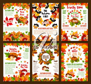 Autumn sale or October seasonal 50 percent discount posters for shop or store design template. Vector autumn seasonal shopping promo set of maple leaf, oak acorn and birch foliage, berry and mushroom