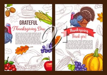 Thanksgiving day greeting poster of turkey bird and autumn September food harvest pumpkin, grape and corn. Vector sketch design for traditional Thanksgiving holiday of maple and oak leaf on red ribbon