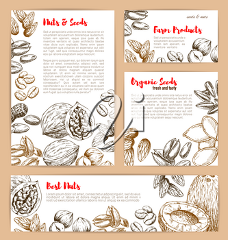 Nuts and fruit seeds or beans sketch poster and banner design. Vector peanut or coconut and hazelnut, pistachio or almond, walnut and macadamia or filbert nut, pumpkin or sunflower seeds and coffee