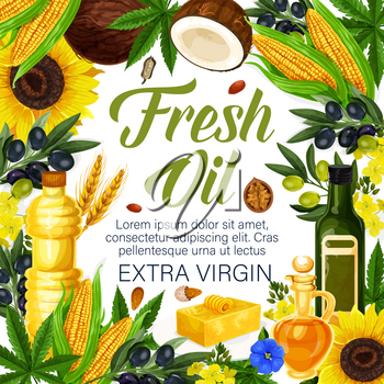 Fresh oil of extra virgin poster for farmer market products. Vector of olive, sunflower seed or coconut and flax or corn, wheat and hemp oil in plastic and glass bottles for natural organic food