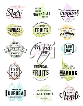 Exotic tropical fruits lettering icons for farm market. Vector calligraphy for star apple, grenadilla or cupuassu and persimmon, cantaloupe melon or miracle fruit and loquat with curuba and dates