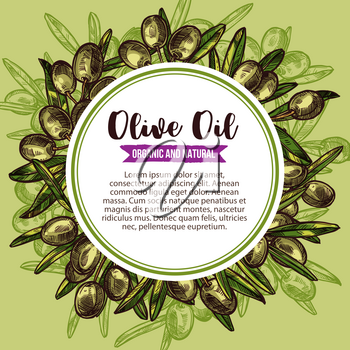 Olive oil round label with green olive wreath sketch. Branch of olive tree frame with ripe fruit, green leaf and copy space in center for extra virgin oil and mediterranean cuisine ingredient design