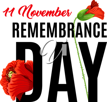 Remembrance day 11 of November also known as Poppy Day. Honoring memory of British soldiers and British Commonwealth. Memory of soldiers killed in the First World War. Poppy flower as Remembrance day symbol