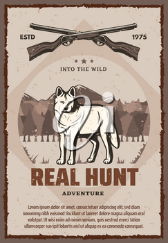 Vector poster with wild animals for hunting club. Vector poster real hunt with rifles or guns and wolf. Hunting banner in vintage style, forest and mountains on background
