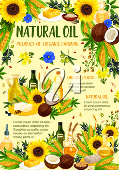 Organic oil products poster of farm bio hemp, coconut or sunflower and corn vegetables, peanut or hazelnut and extra virgin olive or flax oils. Vector design for cooking and healthy nutrition