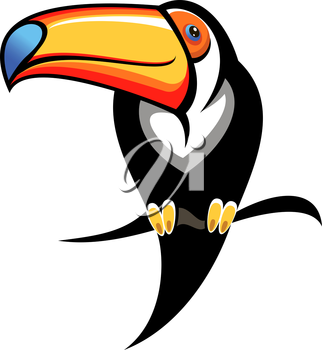 Cartoon illustration for kids of a colourful toucan with a big orange and blue bill perched on a branch, design element on white