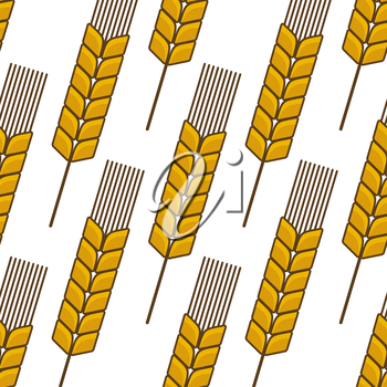Seamless background pattern of a ripe golden ear of wheat in a repeat motif in square format for agriculture industry design