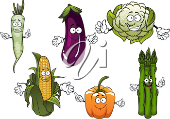 Organic farm corn cob, orange bell pepper, eggplant, cauliflower, daikon and bunch of asparagus vegetables cartoon characters for agriculture harvest and food themes