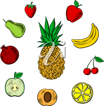 Colorful fresh fruits icons in sketch style with tropical pineapple,  surrounded with green and red apples, orange, apricot, bananas, pear, pomegranate, strawberry and cherry