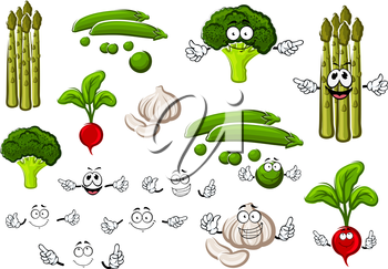Healthful cartoon fresh green pea pods with sweet grains, spicy garlic, curly broccoli, pungent red radish and asparagus. Funny vegetables and separate smiling faces